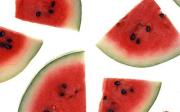 Meloun acukrovka