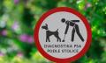 Diagnostika psa podle stolice